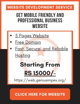 Professional Business Website Service Genius Impex Pakistan